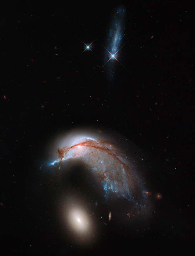 ESA Science & Technology: Hubble image of Arp 142